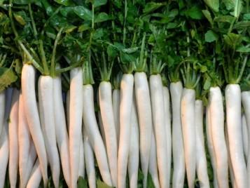 Món ngon cho trẻ ăn dặm từ củ cải