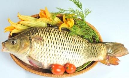 Thực đơn cho bữa sáng: cháo cá chép đậu xanh