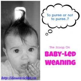 Phương pháp ăn dặm bé tự chỉ huy   Baby Led Weaning
